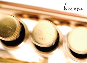 breeze_liten